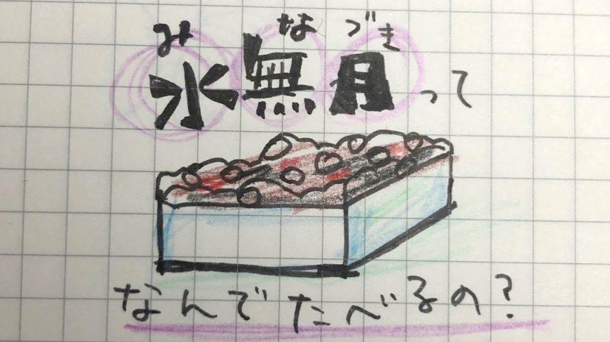 水無月にまつわるあれこれ〜イワレからミニチュア作品まで〜